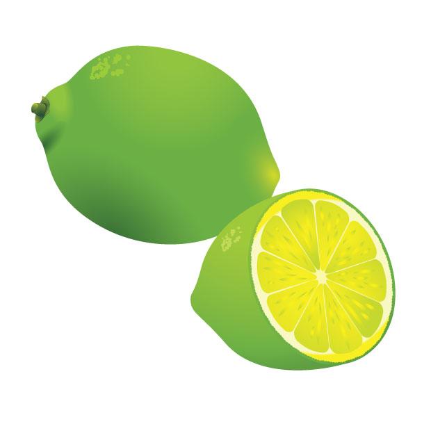 lemon vector free download - photo #2