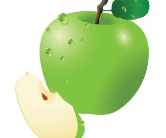 Fresh Apple Vector Illustration