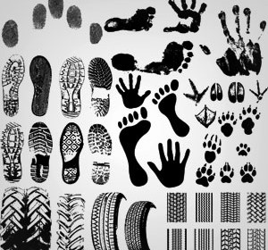 Vector shoeprint footprint Illustration