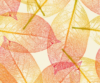 Leaf Autumn Vector