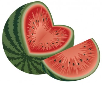 Watermelon vector art