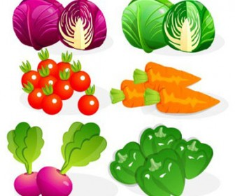 Stock Vector vegetable22