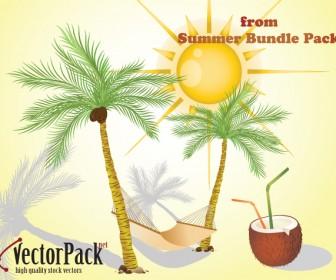 Summer Bundle Vector