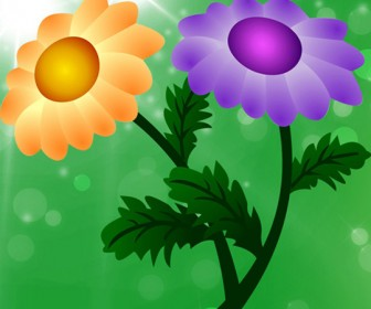 Free Vector Chrysanthemum