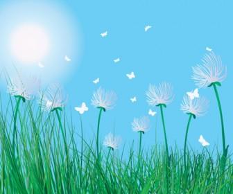 Dandelion on Grass