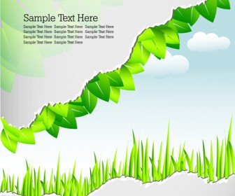Green Leaf and Grass Banner