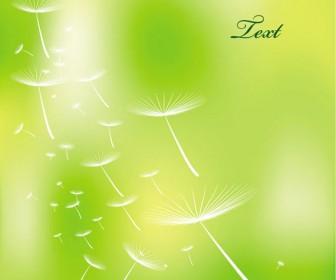 Spring with Dandelion Decoration vector