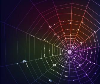 Spider Web Vector Background
