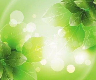 Spring green leafs background art