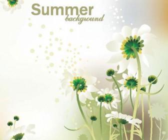Summer Flower Vector Illustration