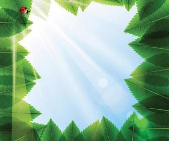 Frame leafs background