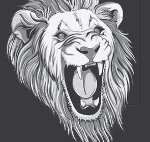 Sketch Lion Illustration Vector