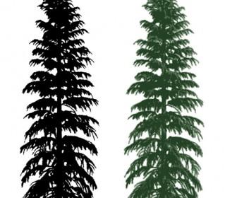 Sillhouette Realistic Tree Vector