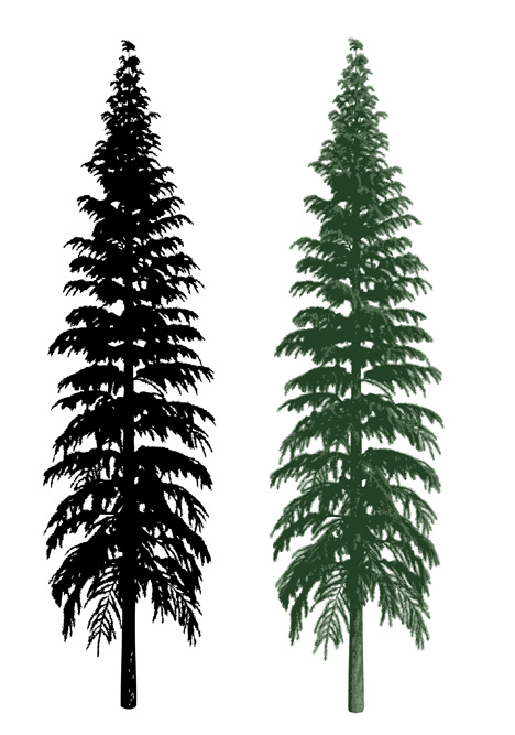 Sillhouette Realistic Tree Vector Ai Svg Eps Vector