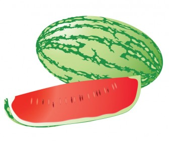 Watermelon Vector Juice Illustration