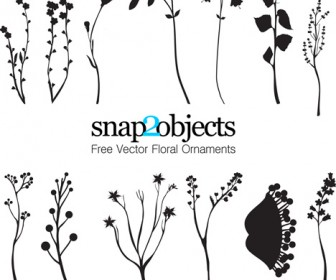 Vector floral ornaments silhouette