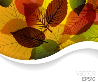 Autumn Backgrounds Vector Art