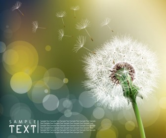 Dandelion illustration card background