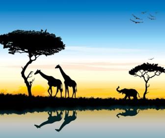 Safari in africa silhouette landscape vector