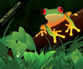 Vector Frog Illustration