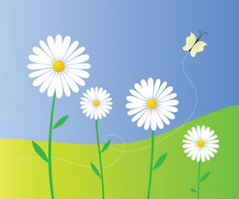 Daisy Vector Flower