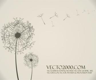 Illustration vector Dandelion