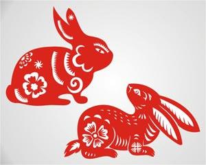 Zodiac of Rabbit Illustration
